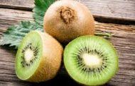 Kabar Kesehatan - Kulit Buah Kiwi Ternyata Kaya Manfaat