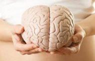 Kabar Kesehatan - Makanan Yang Berbahaya Untuk Otak